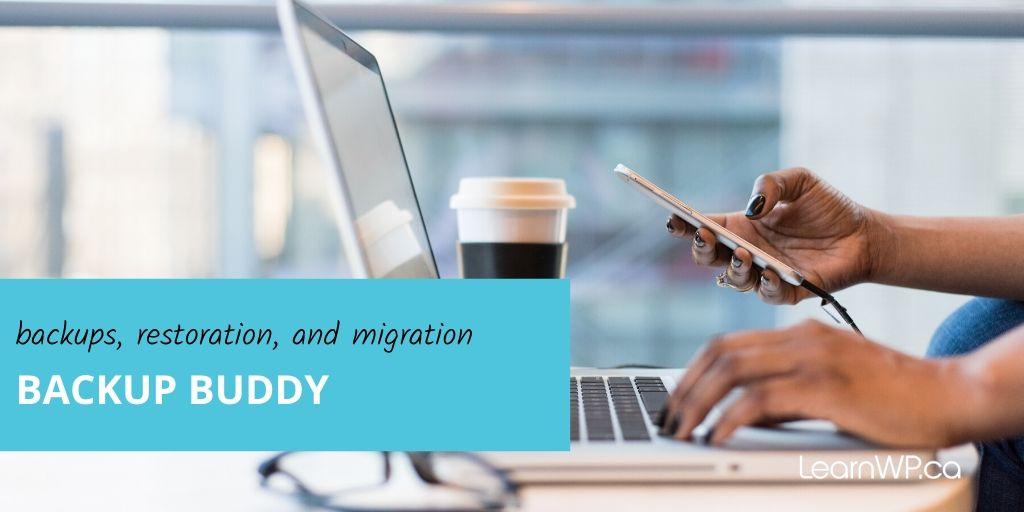backups, restoration, and migration Backup Buddy