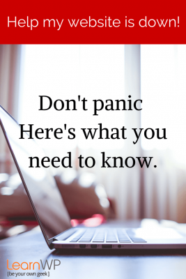 Help! My website is down.  There is no need to panic.  Here's what you need to know to get through this....