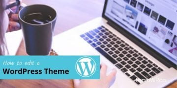 How to edit your WordPress Theme