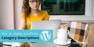 How to add WordPress Category Descriptions