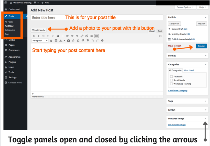 Screenshot of the WordPress Post Editing Area