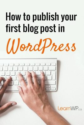 How to publish your first post in WordPress